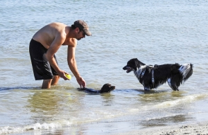 fort de soto dog beach 3233